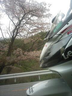 柳沢峠を越えて・・・