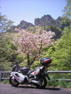 妙義山まで来ました